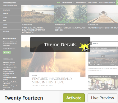WordPress 3.9 theme details